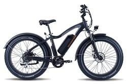 Best electric bike brand (Rad Power ebike)